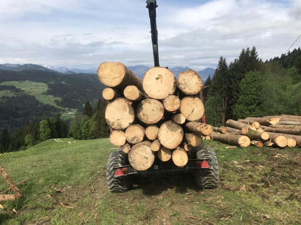 Biomassetransport2